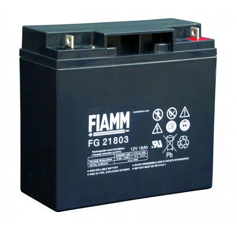 Аккумулятор FIAMM FG21803